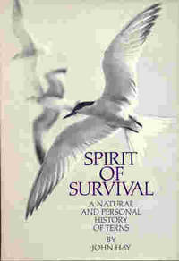 Spirit of Survival: A Natural and Personal History of Terns