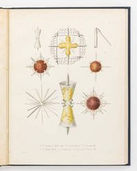 Die Radiolarien (Rhizopoda Radiaria). Eine Monographie von Dr Ernst Haeckel ... mit einem Atlas...