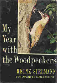My Year With The Woodpeckers