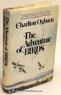The Adventure of Birds