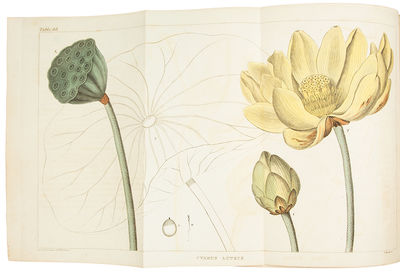 Philadelphia: vol.I: M. Carey & Sons; vol.II & III: H.C. Carey & I. Lea, 1824. 3 volumes, quarto. (1...