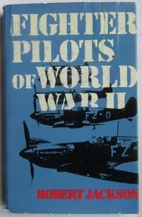 image of Fighter Pilots of World War II
