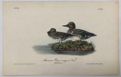 Philadelphia: J.T. Bowen. unbound. Octavo bird print. Lithograph with original hand coloring. Page m...