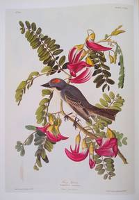 Birds of America: The Complete Collection of 435 Illustrations from the Most Famous Bird Book in the World