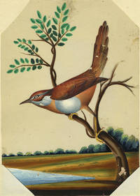 Bird Painting from India on Mica