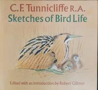 Sketches of bird life.