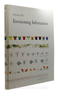 image of ENVISIONING INFORMATION