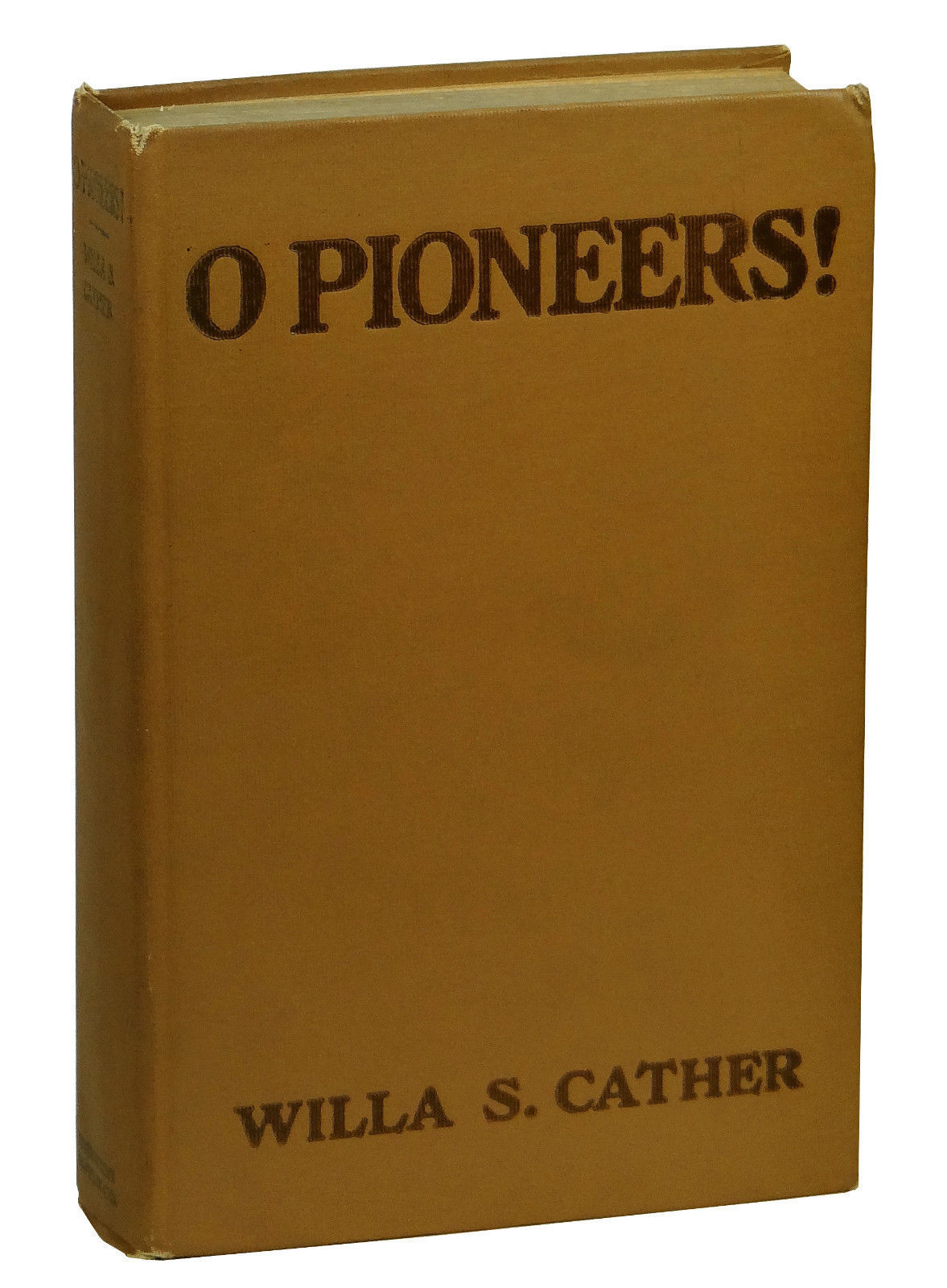 book analysis o pioneers Pioneers o pioneers is a paean of praise to the pioneers, those americans who, by great effort, succeeded in transforming wilderness into civilization whit.