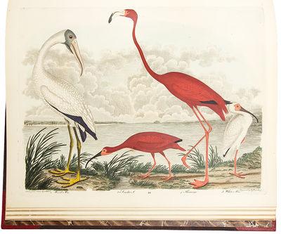 New York & Philadelphia: Collins & Co. and Harrison Hall, 1829. 4 volumes. (text: 3 vols., quarto , ...