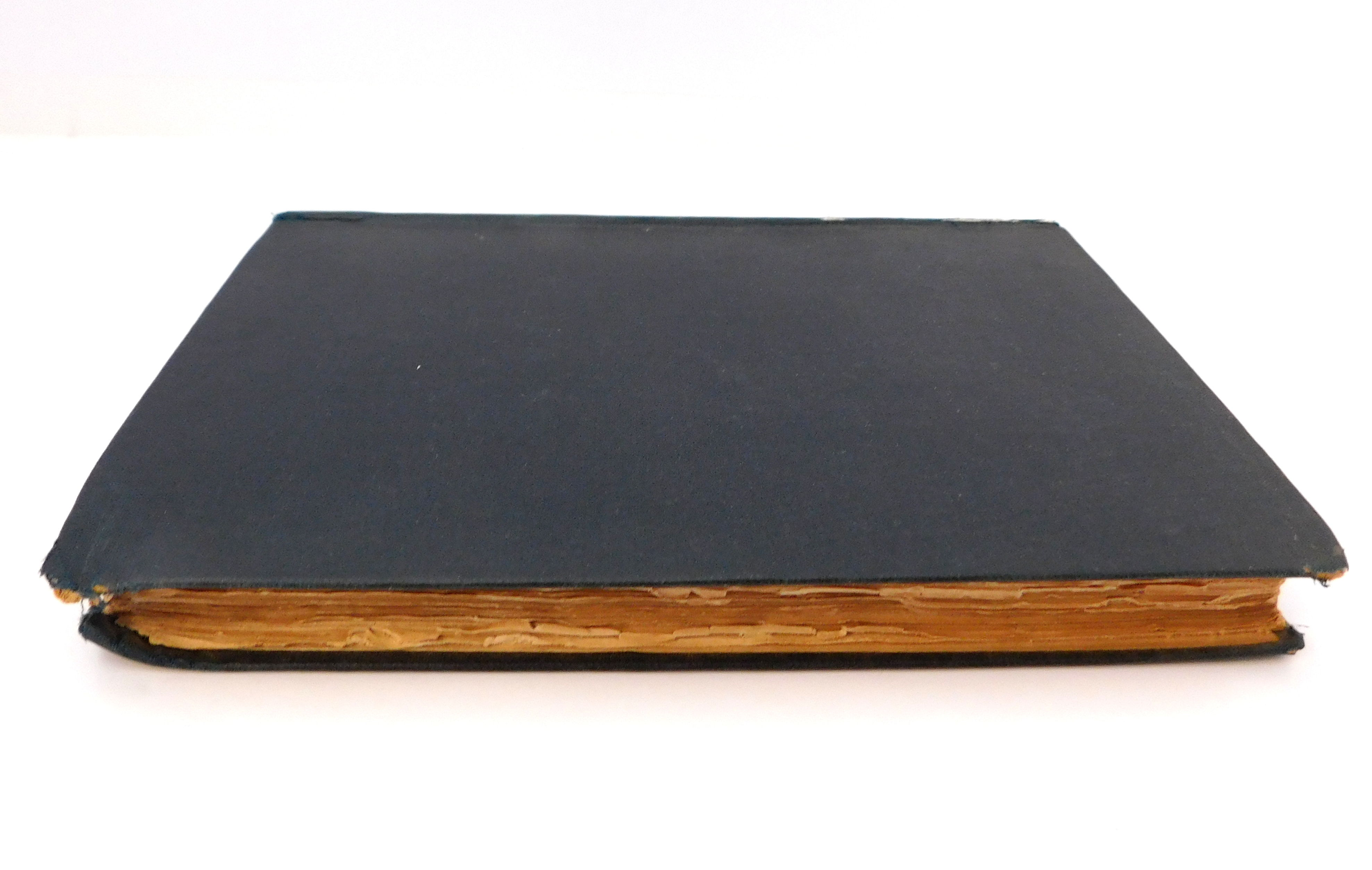Carpenter world thesis