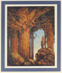 Jason and the Talking Oak: from A Wonder Book and Tanglewood Tales.