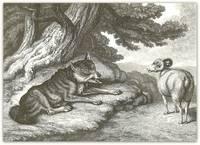Sheep and Hunted Wolf