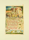 View Image 1 of 2 for Songs of Innocence and of Experience, Plate 32: The Clod & the Pebble. Inventory #124114