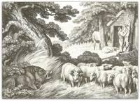 Wild Boar, Sheep & Butcher