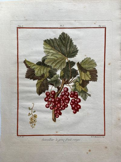 Paris, 1768. unbound. very good. Rene Le Berryais. Fruit botanical. Stipple engraving with hand colo...