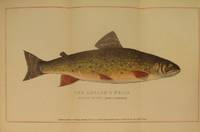 image of Brook Trout Fishing. An Account of a Trip of the Oquossoc Angling Association to Northern Maine in June, 1869. About Brook Trout