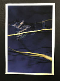 Night Tree, Volume VI by  Anna Daedalus  - Signed First Edition  - 2018  - from Passages Bookshop (SKU: 4527)