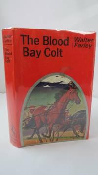 The Blood Bay Colt