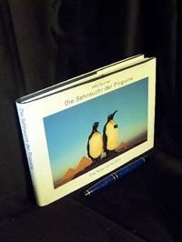 Die Sehnsucht der Pinguine   Eine Reise um die Welt