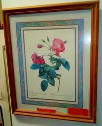 MODERN RE-PRINT OF A ROSE