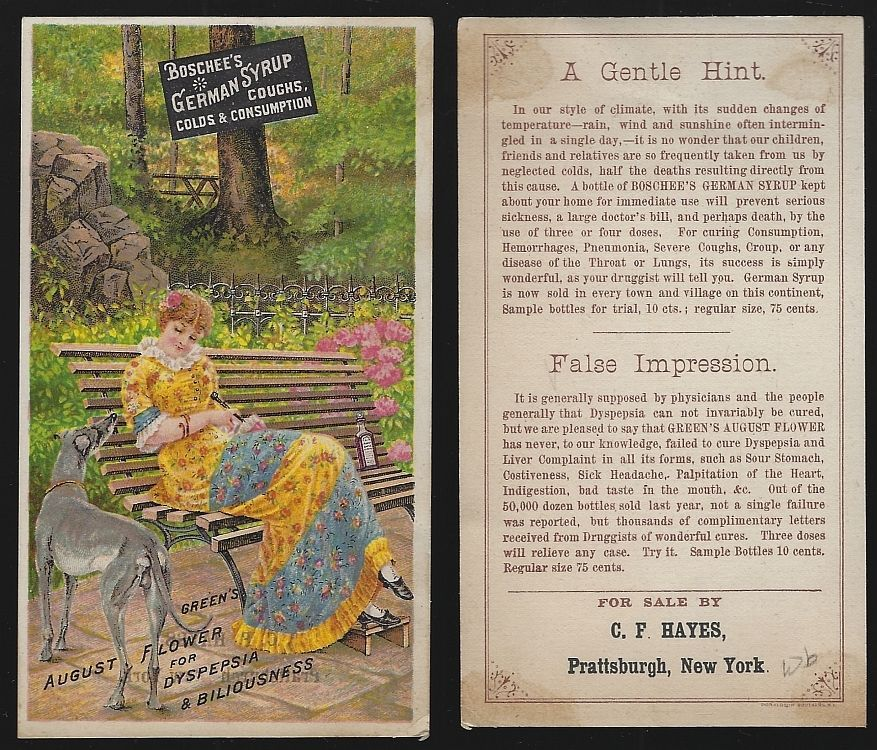 GREEN'S AUGUST FLOWER BOSCHEE'S GERMAN SYRUP VICTORIAN TRADE CARD WITH LOVELY LADY AND HER DOG, Advertisement