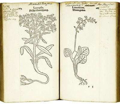 Primi de Stirpium historia...