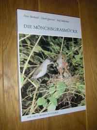 image of Die Mönchsgrasmücke. Sylvia atricapilla