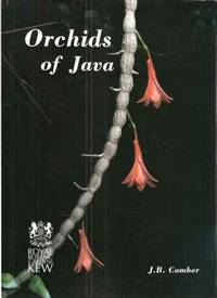 image of Orchids of Java