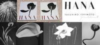 """YASUHIRO ISHIMOTO: HANA (""""FLOWERS"""")"""