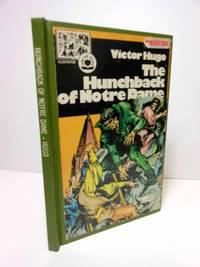 Hunchback of Notre Dame Illustrated Graphic Novel
