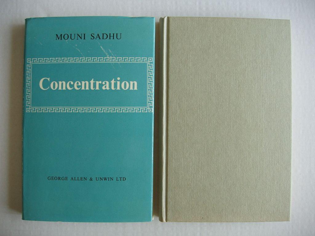 Mouni sadhu concentration