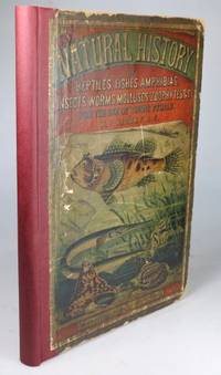 Natural History of the Animal Kingdom for the Use of Young People. Part III. Reptiles, Amphibia,...