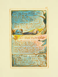 Songs of Innocence and of Experience, Plate 43: My Pretty Rose Tree; Ah! Sun-Flower; The Lilly.