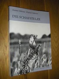 image of Die Schafstelze. Motacilla flava