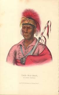 Tah-Ro-Hon an Ioway Warrior