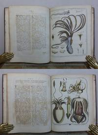 THE GENERA VERMIUM, exemplified by Various Specimens of the Animals contained in the Orders of the Intestina and Mollusca Linnaei. by  James.: BARBUT - First Edition - 1783 - from Roger Middleton (SKU: 34778)