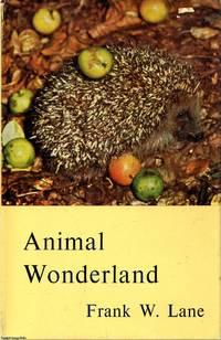 image of Animal Wonderland