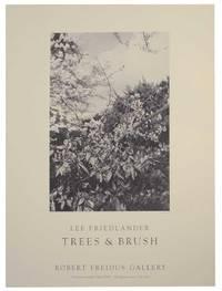 Trees & Brush