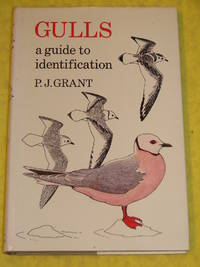 Poyser, Gulls, a Guide to Identification