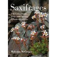 Saxifrages A Definitive Guide to the 2000 Species, Hybrids & Cultivars