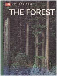 image of THE FOREST