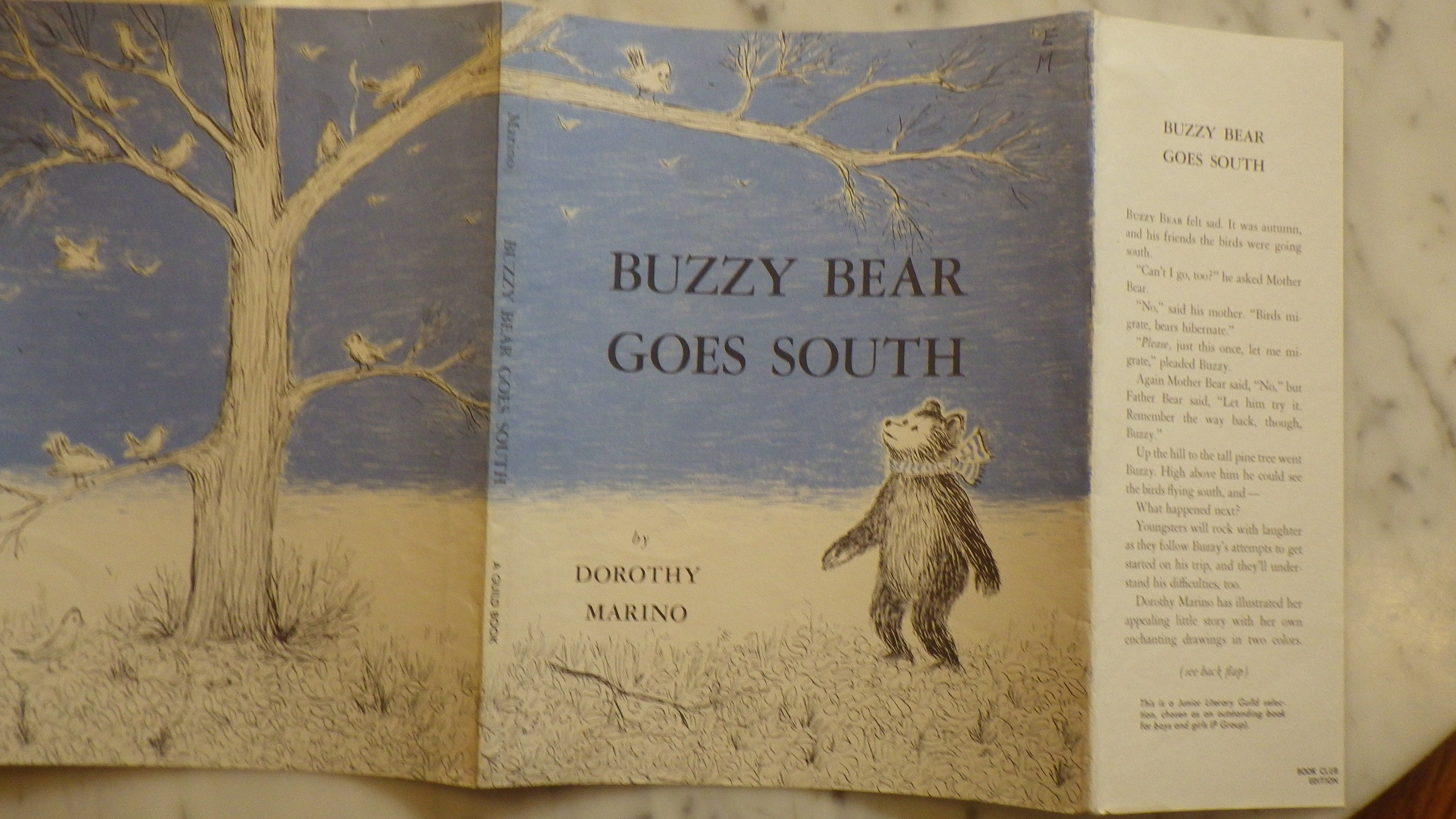 Buzzy Bear Goes South, by Dorothy Marino, in Dust Jacket , He felt sad, It  was autumn & his friends the birds were going South, His mother said Birds