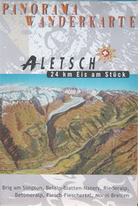 Aletch: 24 km Eis am Stück
