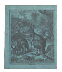 Child's exercise book with decorated Kangaroo covers by  Friedrich SPECHT - 1880 - from Rare Illustrated Books (SKU: 1655)