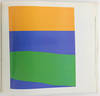 View Image 10 of 13 for Ellsworth Kelly Inventory #27139