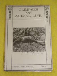 Glimpses of Animal Life