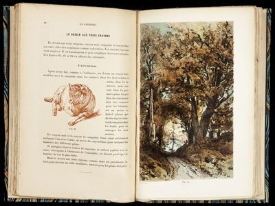 8vo , (3) ff. (half title, title, dedication), 182 pp., including numerous color-printed images in t...