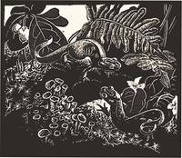 WOODCUT:RED EFTS