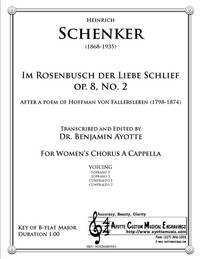 Im Rosenbusch der Liebe schlief, Op. 8, No. 2