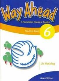 Way Ahead 6 Gram Practice Revised